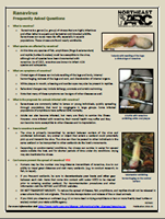 Coverpage of the factsheet - Ranavirus FAQ
